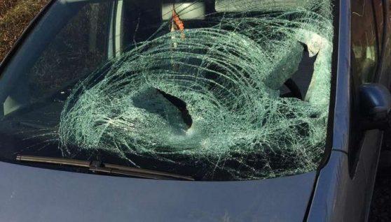 На Закарпатті автомобіль на смерть збив 16-річного хлопця