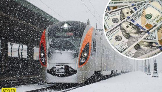 У поїзді Рахів-Харків знайшли валізу, набиту доларами: хто її власник?