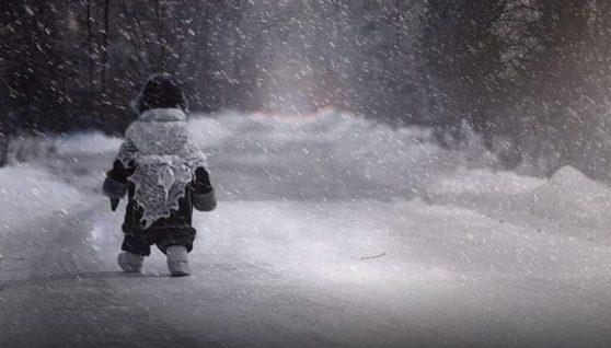У Запорізькій області 5-річну дівчинку в мороз висадили в лісосмузі