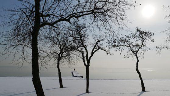 В Україну прийдуть дощі і похолодання