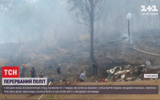 Семеро людей загинули під час падіння літака в Бразилії: серед жертв родина місцевого магната